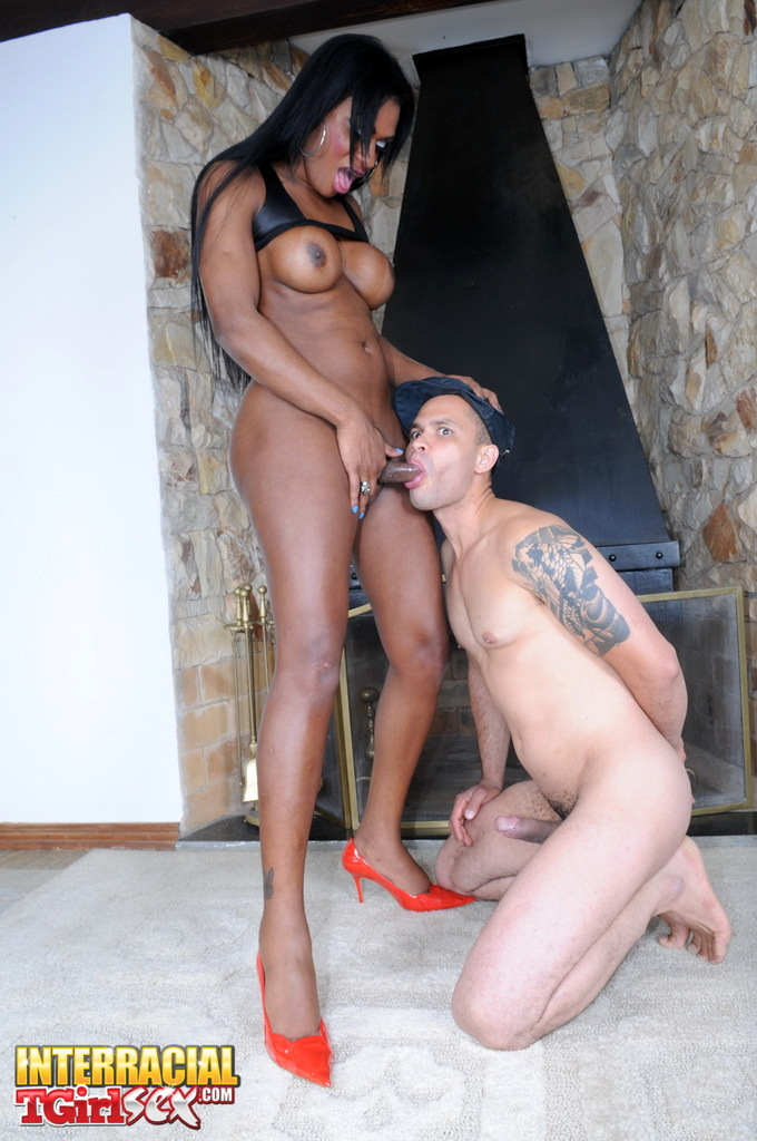 Beautiful Black T-Girl Andreia Getting Ruined Rough