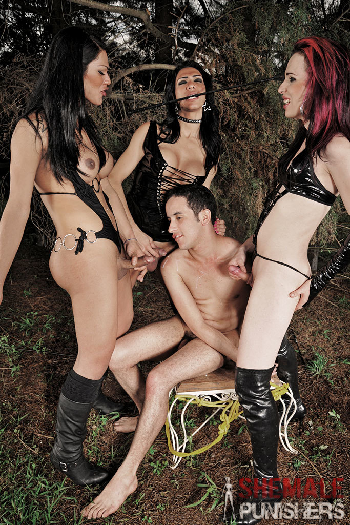 Transexual Domination