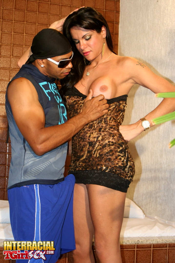 Kissable Gabriela Taking A Enormous Black Dick