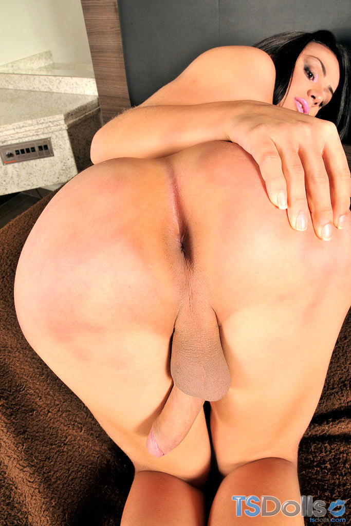 Provocative Transexual Gets Naked And Wanks